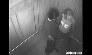 Sexy time in the elevator acquires caught on livecam
